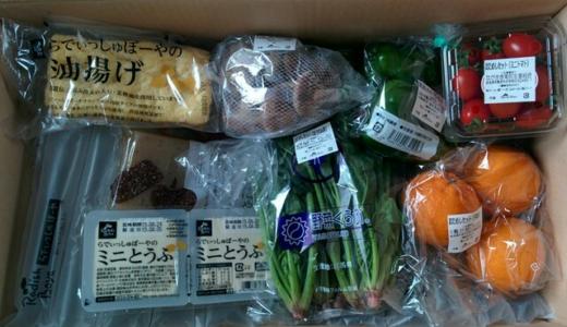 らでぃっしゅぼーやのお試しセットを注文!有機野菜がお得に購入できた